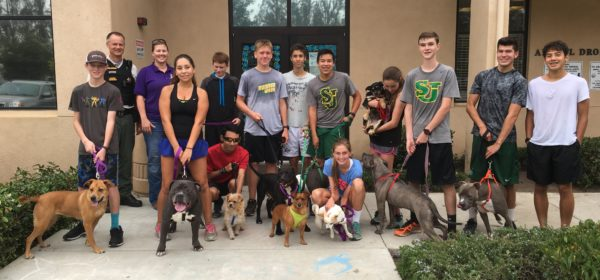 High School Cross Country Team Takes Shelter Dogs On Training Runs