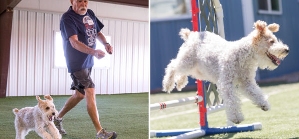 Veteran goes from wheelchair to running with agility dog training