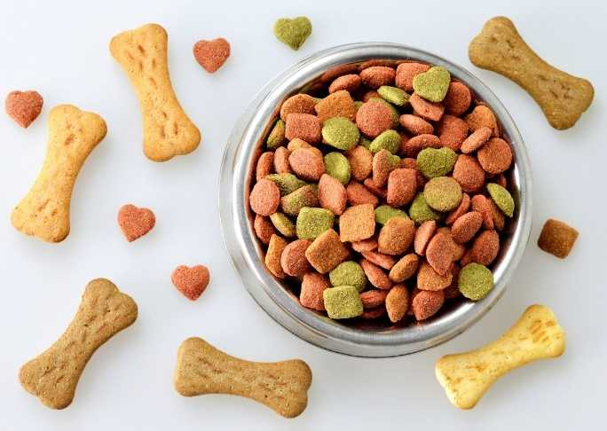 Good quality dog food for dogs