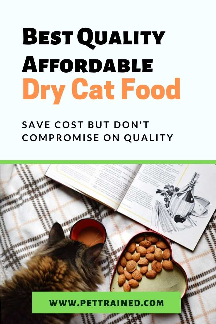 Best Quality Affordable Dry Cat Food For Cats
