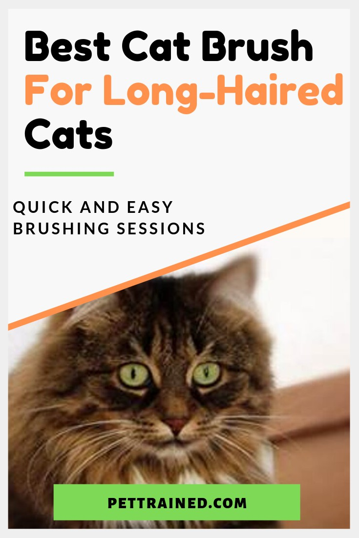 Are you looking for the best brush for long-haired cats to stop mats, shedding and tangles? www.Pettrained.com. Long-haired cats are prone to mats and tangles if not brushed regularly. See reviews of the best brushes for long haired cats here as well as grooming tips and videos from expert groomers.#cat #catbrush #catgrooming #longhairedcats #mats #shedding #tangles