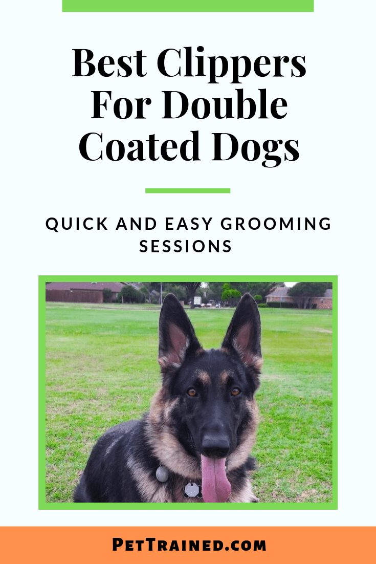 Best Clippers For Double Coated Dogs