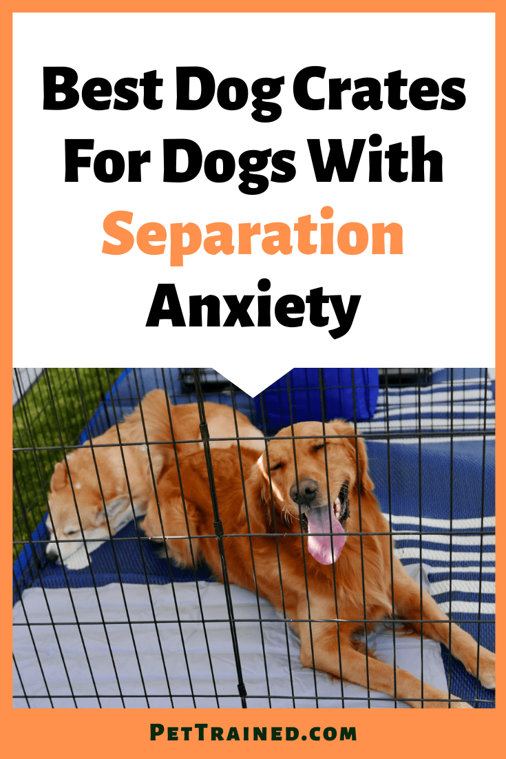Best dog crates for dog with separation anxiety