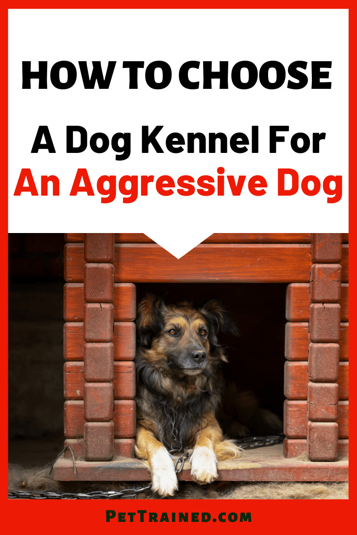 Types Of Dog Kennels For Aggressive Dogs