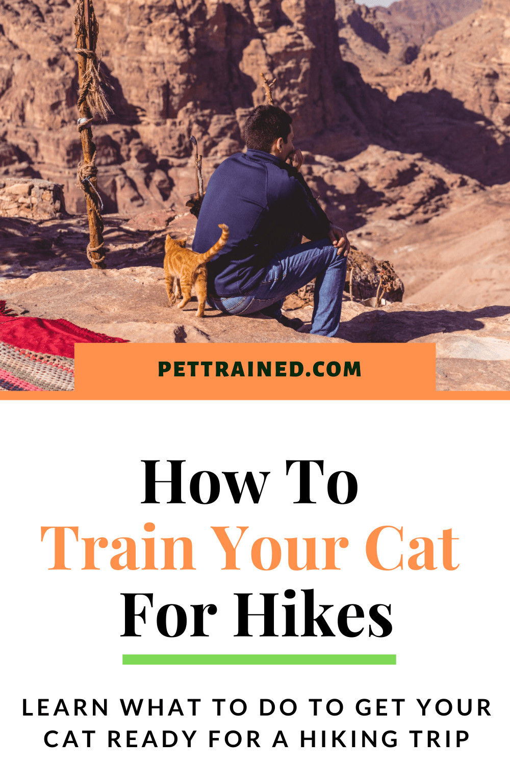 How To Train A Cat For Hikes