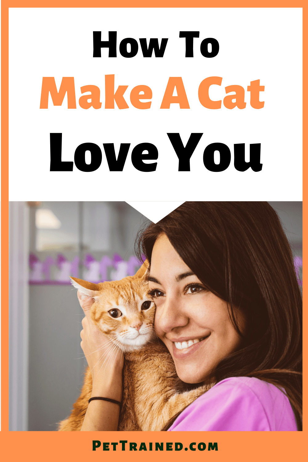 How to make a cat love you fast