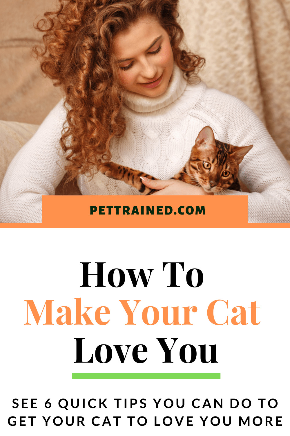 How to make your cat love you now