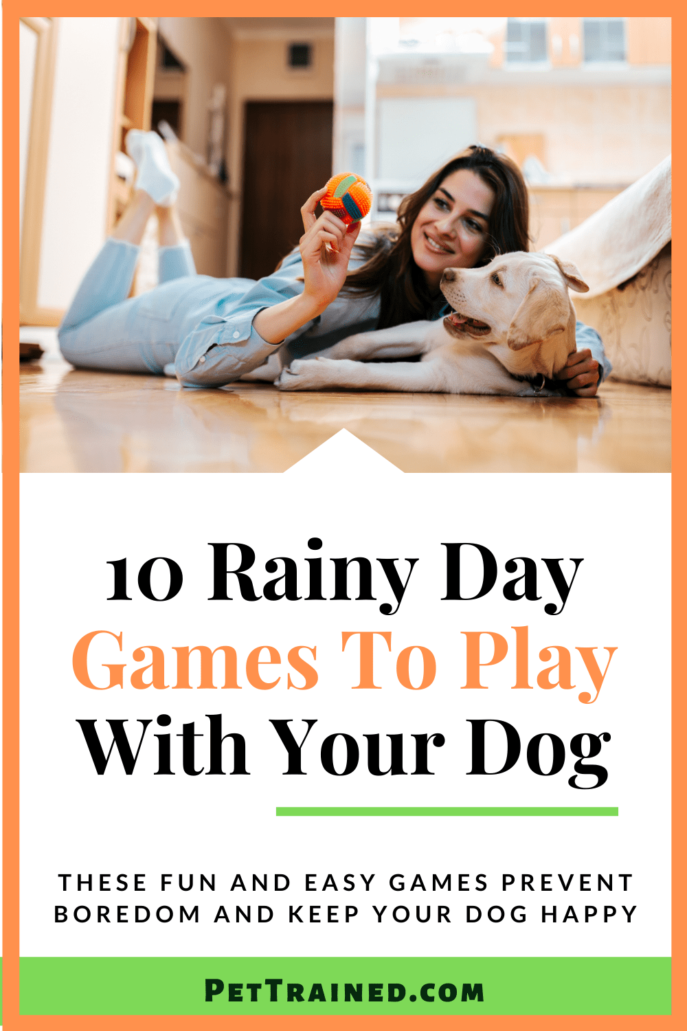 Rainy Day Games to Play With A Dog pin