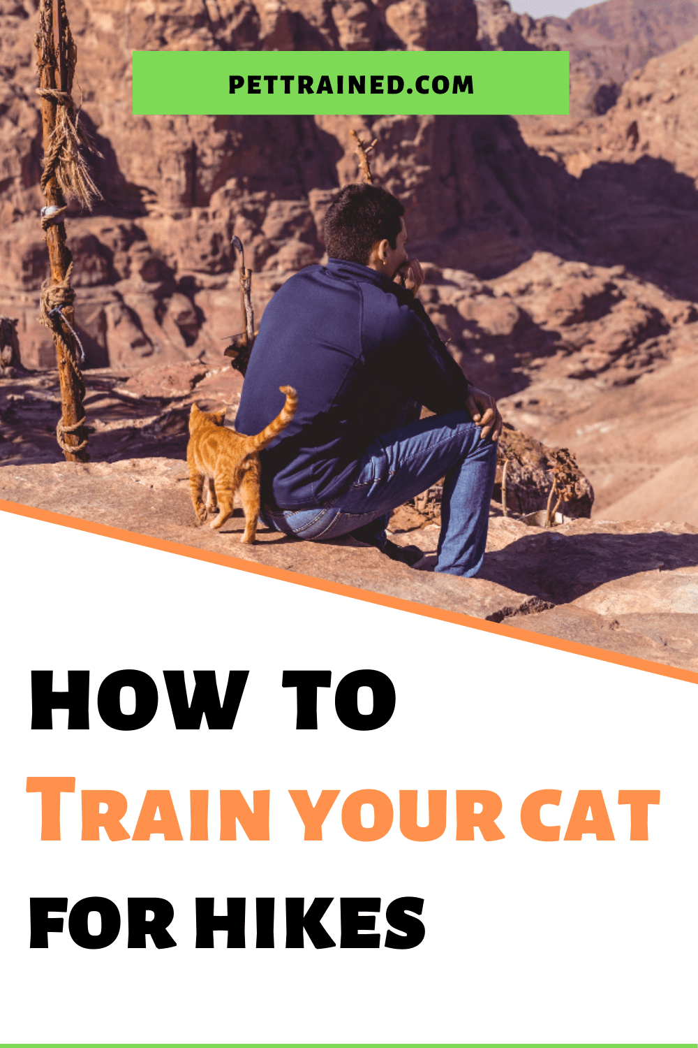 best cat breeds for hiking