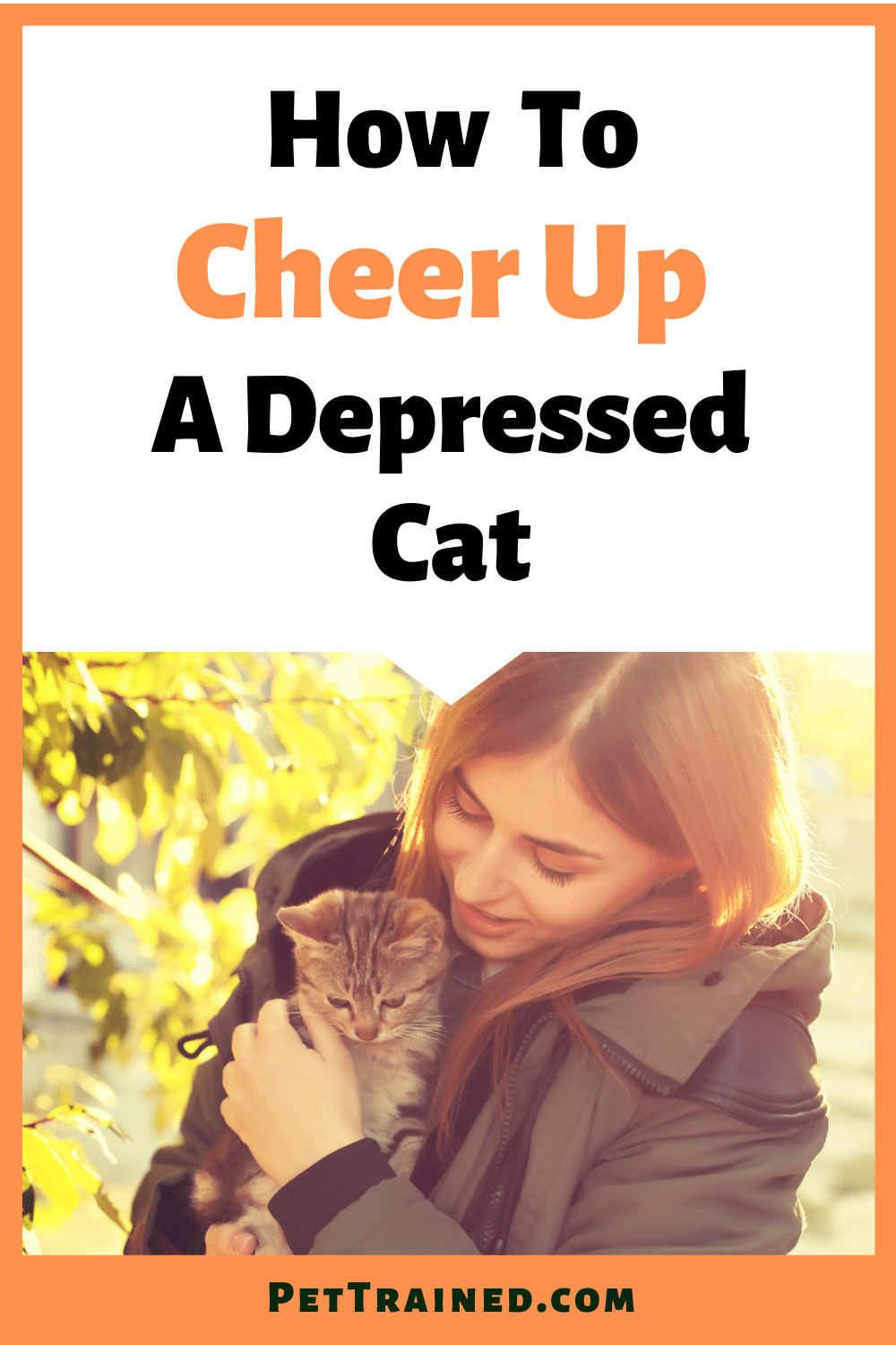 signs of cat depression and solutions