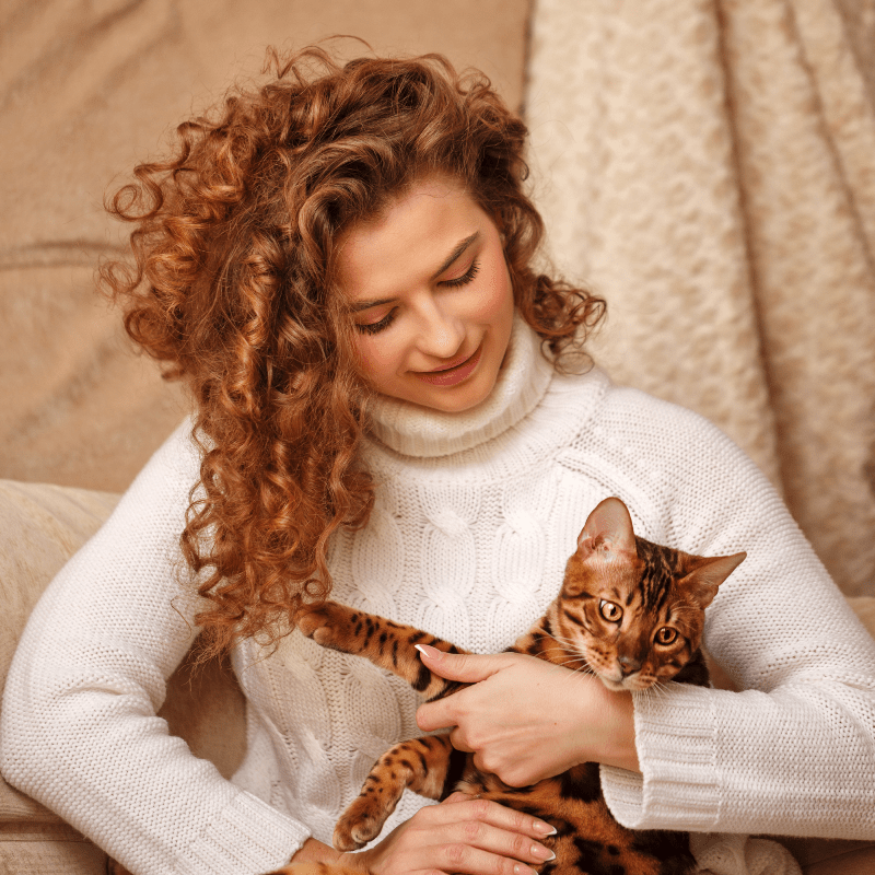 ways to make your cat more affectionate to you