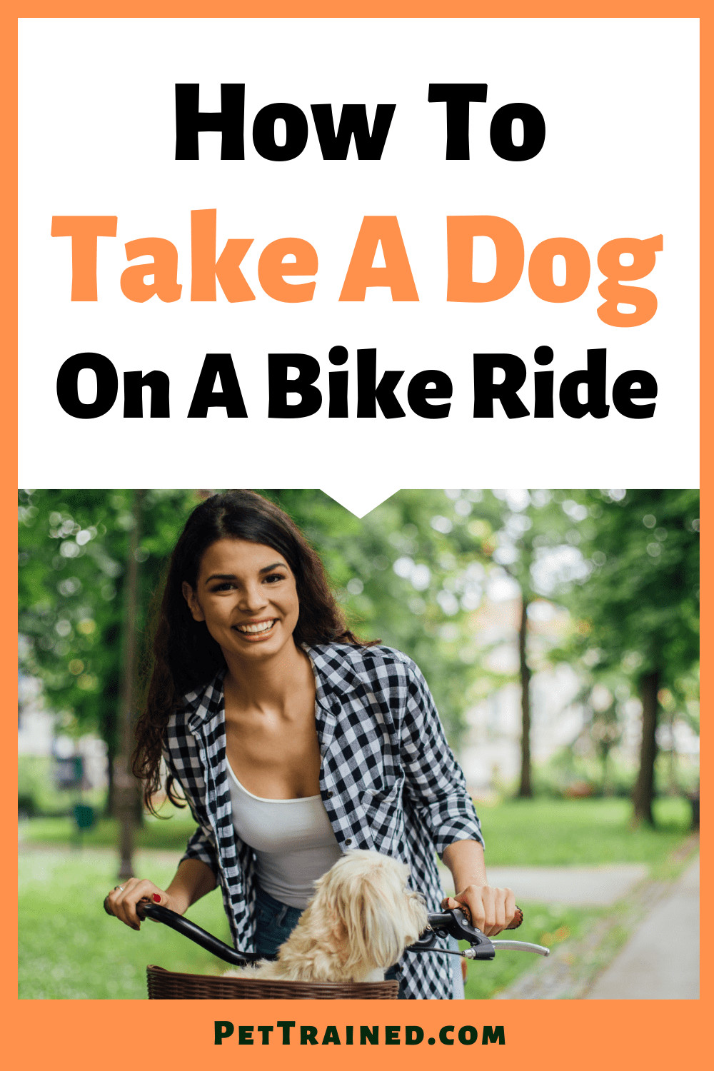 How to take a dog bike riding today