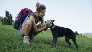 How To Train A Dog For Hiking