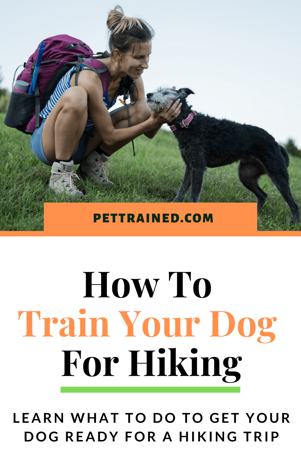 How to train your dog for hikes
