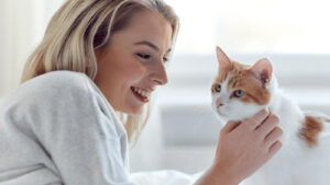 Signs A Cat Likes You