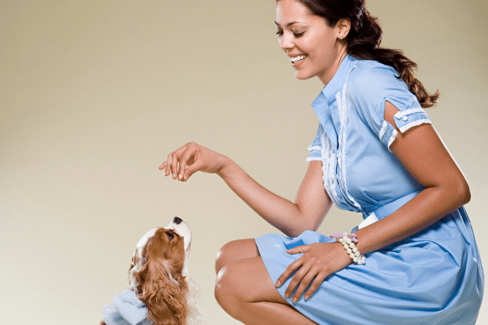 how to stop a puppy biting children