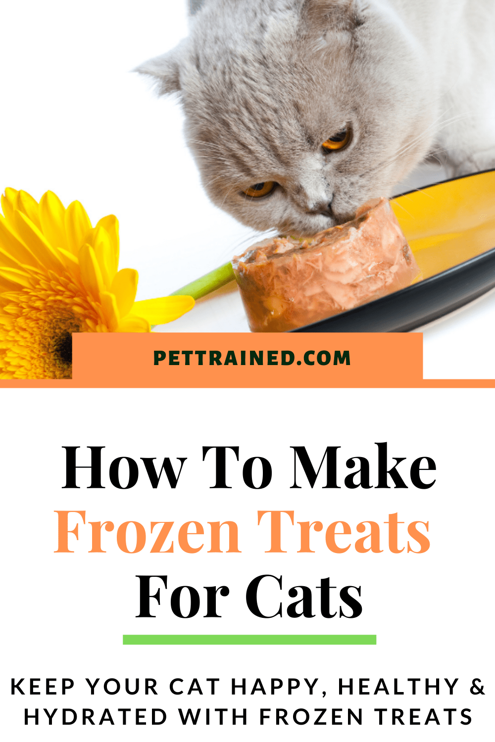 how to make freezer treats for cats