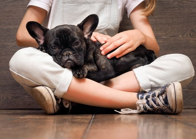 how to snuggle with a dog