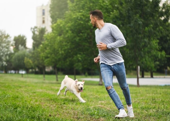 How To Train A Dog To Run With You