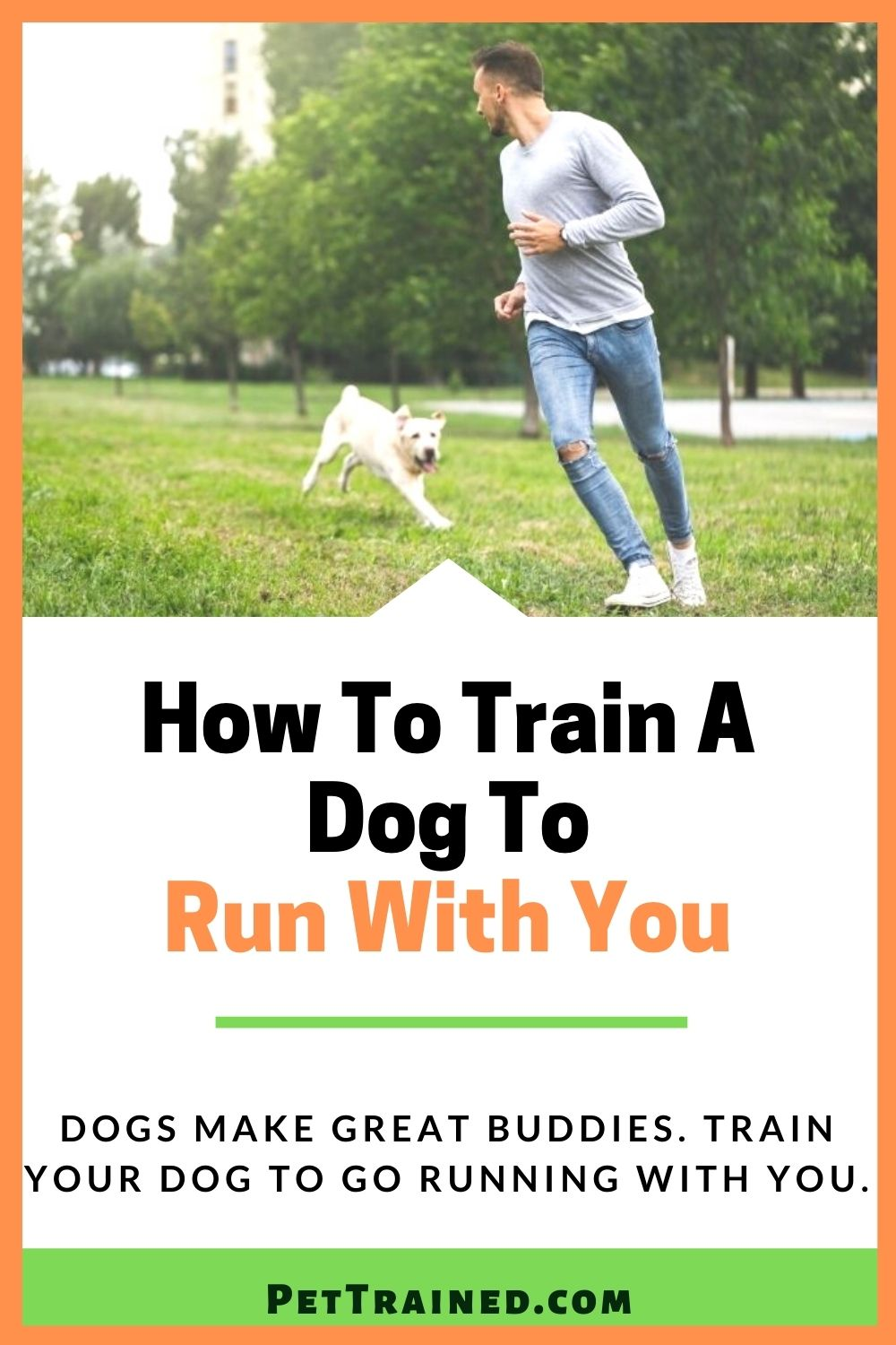 How to exercise your dog by running
