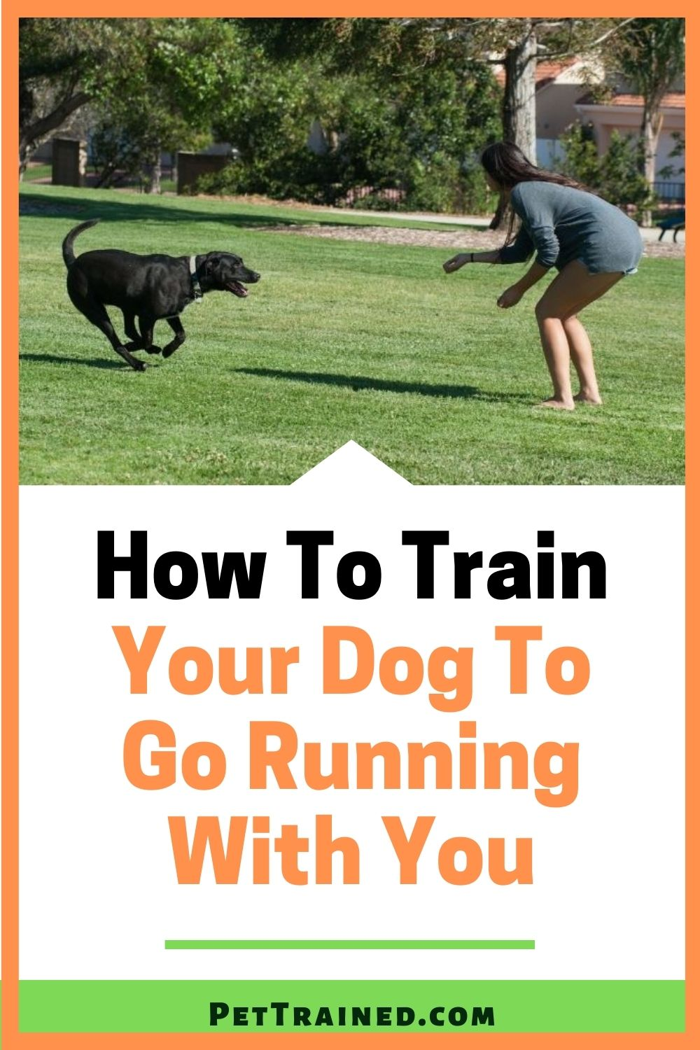 How to train your dog to run by your side