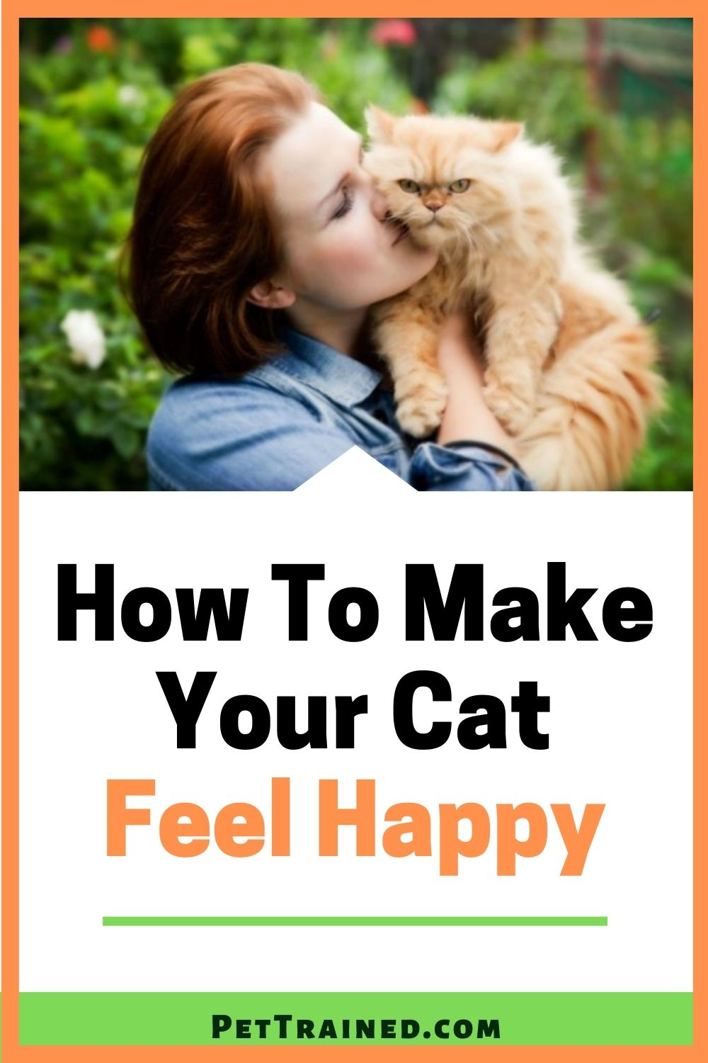 top tips for making adult cats happy