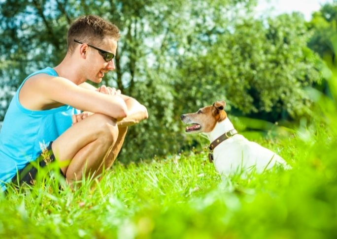 How to use a dog whistle to train your dog to sit