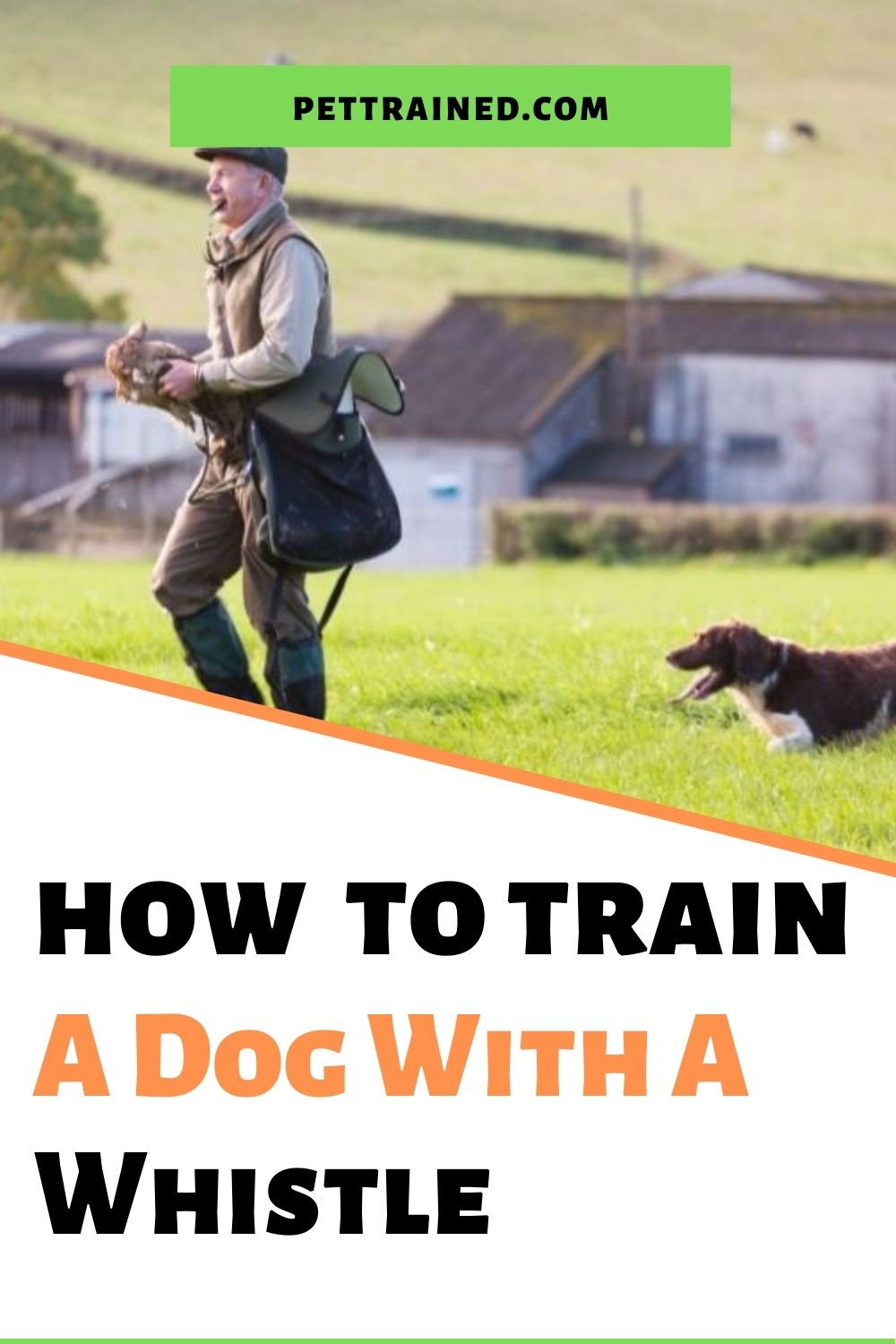 Train your dog with a dog whistle