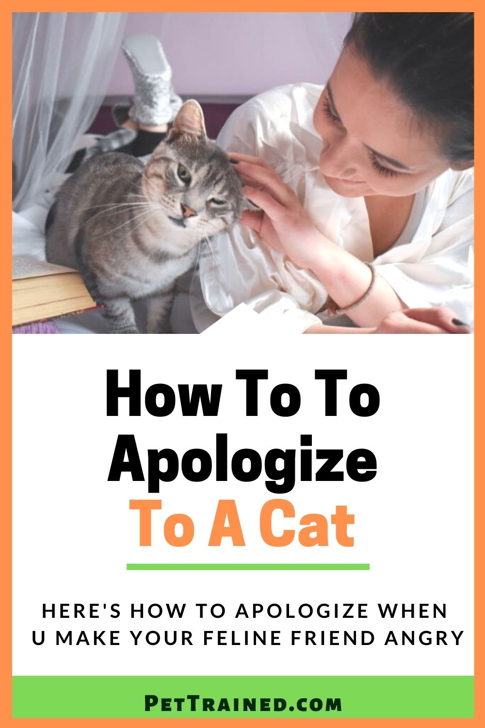 How to apologize to your feline friend