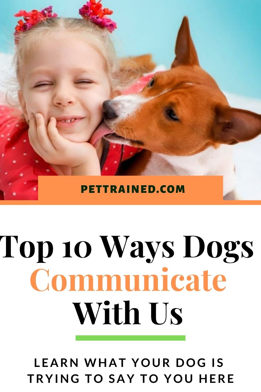ways dogs communicate with us