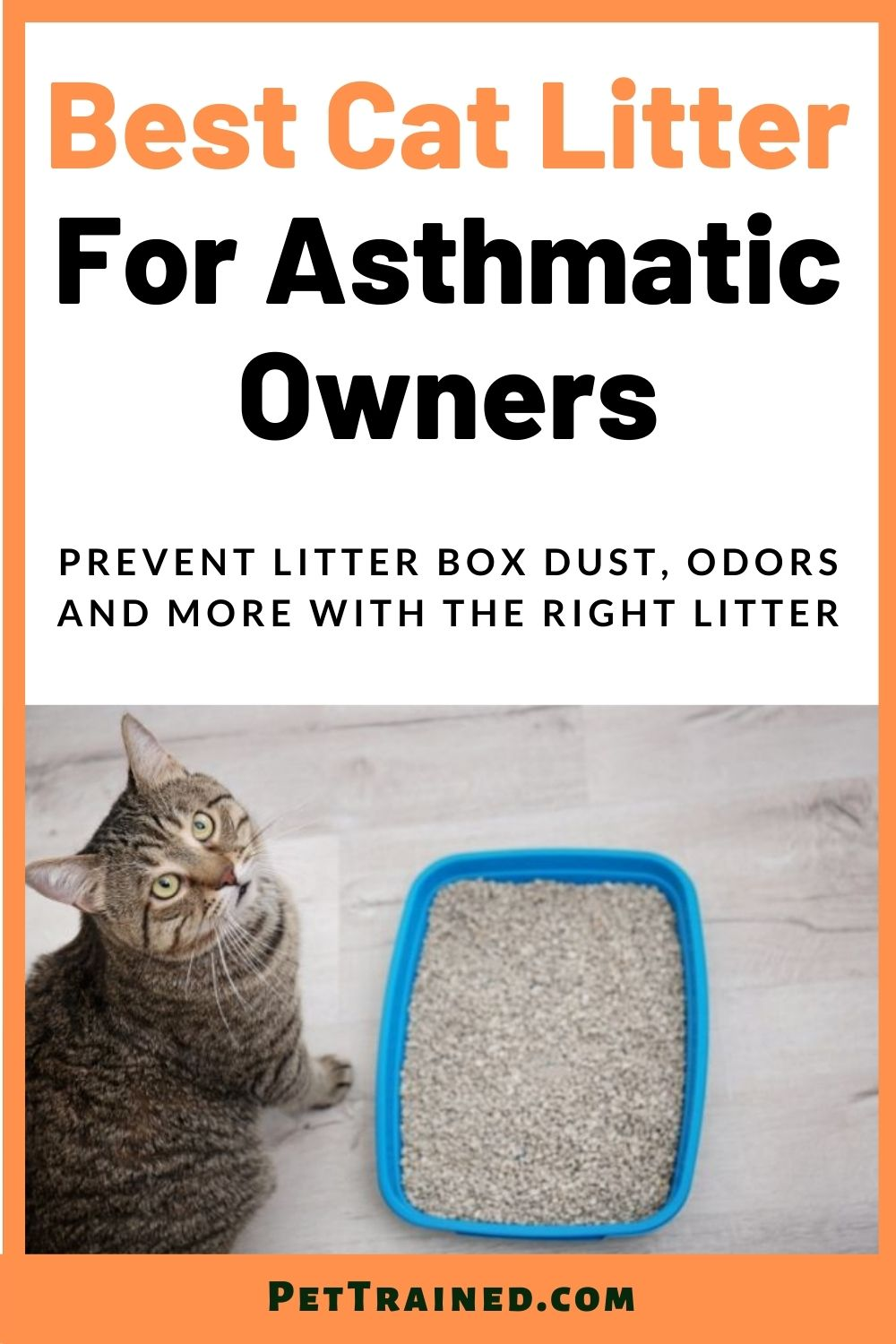 Best cat litter for cat owners with asthma