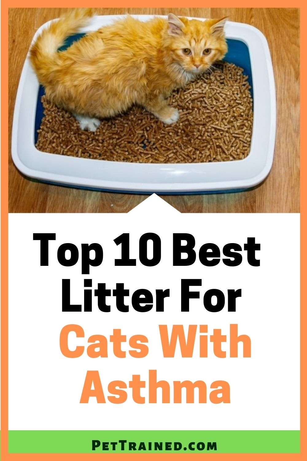 Best litter for cats with asthma dust free