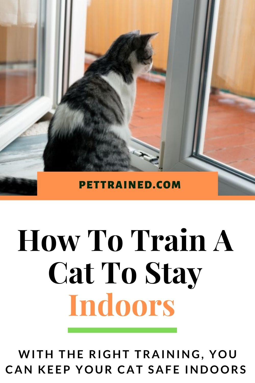 Train your cat to like being at home