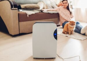 What are the Best Air Purifier For Cat Litter Odor, Dust and Box
